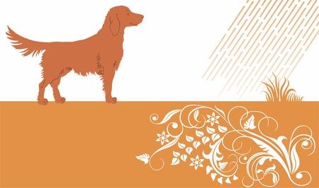 cocker: Baner mit Hund und floral Ornament.