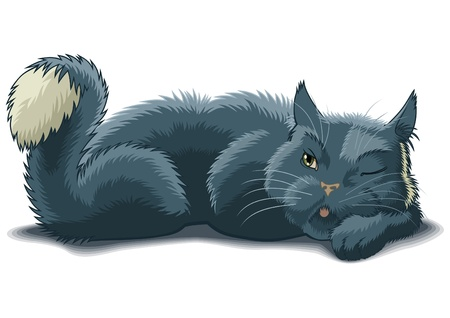cat illustration: Lying cat with raised by tail watches one eye