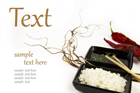 china cuisine: rice with sauce and pepper  (With sample text)