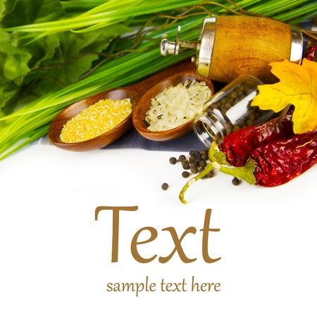 freshest: the freshest ingredients  (With sample text)