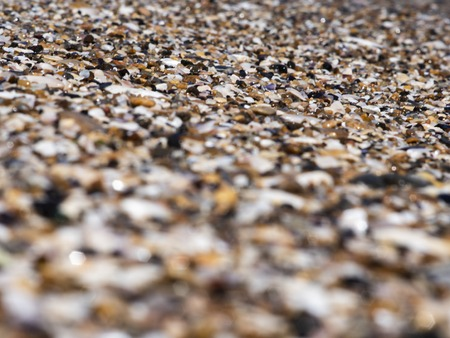 sea pebbles and shells and sand. texture. the background Reklamní fotografie