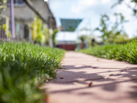 The path of the tiles. Green grass in the yard. lawn