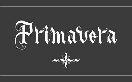 primavera: Primavera hand lettering vector illustration. Parallel pen gothic calligraphy