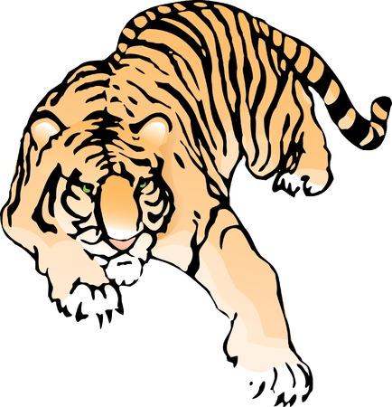 Imperceptibly crouching tijger