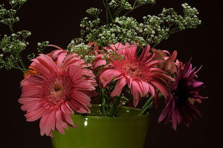 daisys: boukuet of pink gerber daisys in green vase
