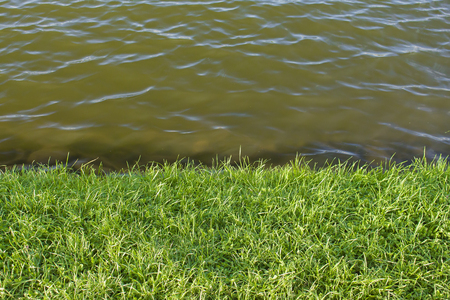 green lawn bordered by water Imagens