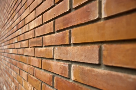 brick wall Stock Photo - 11387037