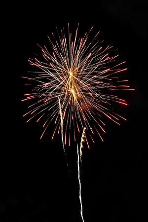 A delicate burst of fireworks in the night sky