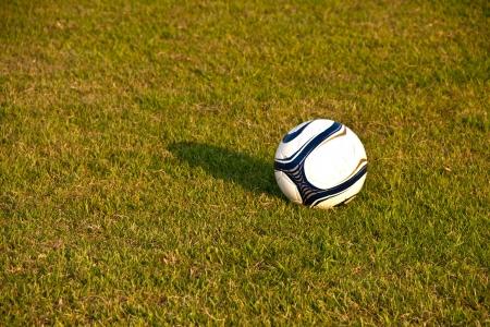 Soccer ball or football ball on green field Stock Photo - 13750498