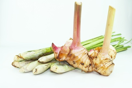 standalone: galangal and Lemon Grass on white background