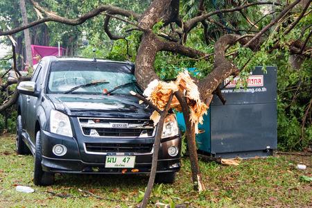 CHIANG MAI, THAILAND - NOVEMBER 25 : Fallen tree on a car after hurricane on November 25, 2012 in The Chiang Mai Gymkhana Golf Club of Thailand International Balloon Festival 2012, Chiang Mai, Thailand