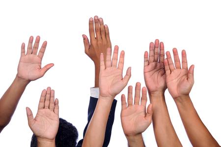diversidad: Diversidad de las Manos del asunto Raised