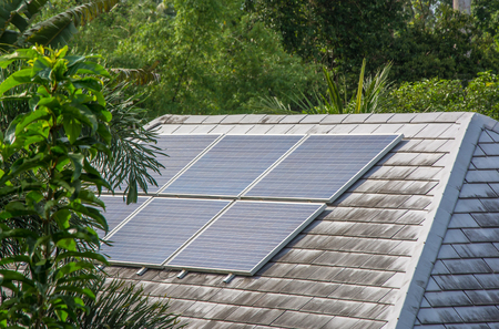 Solar panels installed and in use on top of roof of house among green leaves