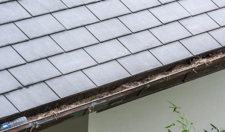 Section of roof rain gutter clogged with leaves, debris on residential home Stock Photo