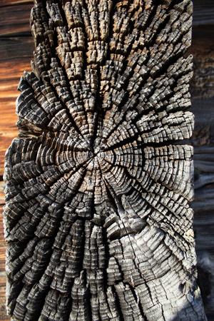 Old Wood Texture Stock fotó