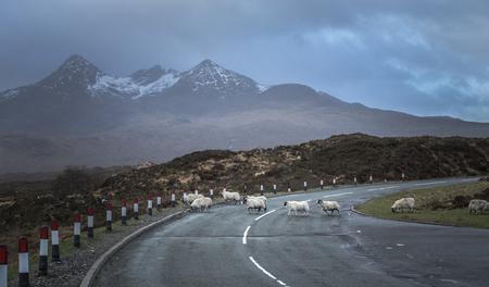 Scotland Countyside