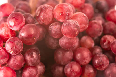 Red ripe grapes with water spray to freshness after harvesting on wooden background.