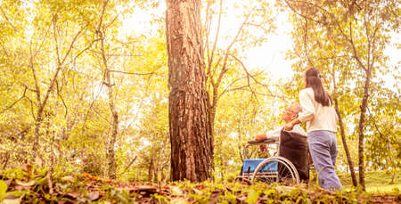 Rear of happy grandfather in wheelchair relaxing and walking with granddaughter outdoor at the park. Family happy lifestyle. Zdjęcie Seryjne