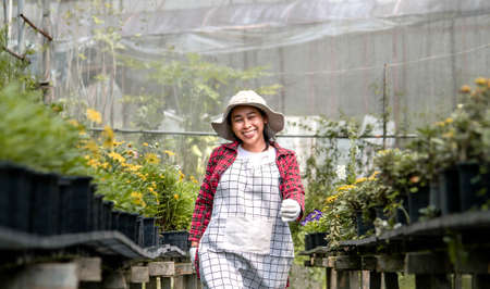 A happy female farmers with a tablet in her hand working in the greenhouse. Modern technology for farmers and floriculture. Zdjęcie Seryjne