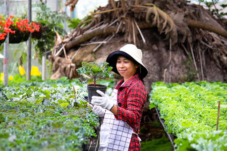 A happy female farmers with a tablet in her hand stands near a flowers in the greenhouse. Modern technology for farmers and floriculture.