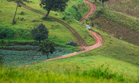 Dirt road for cars up the Doi Mae Tho with beautiful trees and green meadows, Hot District, Chiang Mai, Thailand.