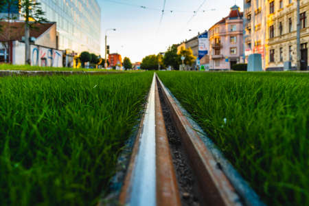 Green tramway track. Grass covered tramway track. Greenery in the city. Habitable zone reduce urban heat. Island effect. Banco de Imagens