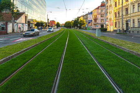 BRNO, Czech Republic - September, 5. 2020:Green track. Grass covered tramway track. Greenery in the city. Habitable zone reduce urban heat. Island effect.