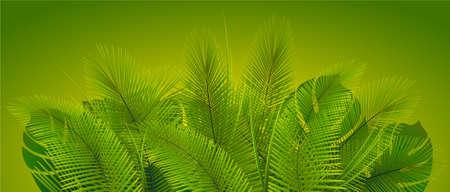 Tropical vegetation on green background. Plant leaves. Exotic vegetation.