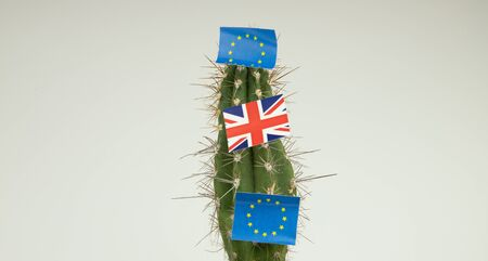 the flag of England and the European Union on a cactus, exit from the EU