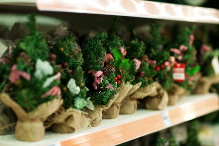 Line of bare Christmas tree on shelfs in hypermarket Stock Photo - 16463991