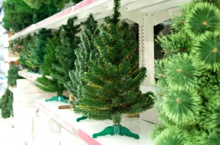Line of bare Christmas tree on shelfs in hypermarket Stock Photo - 16463987