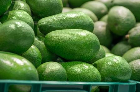 Full box of green Avocado in supermarket Stock Photo - 18033139