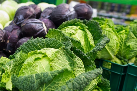 savoy and red cabbage  on the supermarket shelf photo