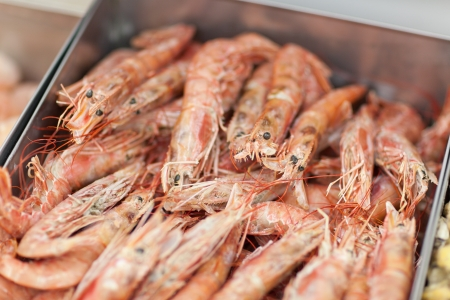 Bunch of fresh shrimps in fridge in supermarket Stock Photo - 18914984