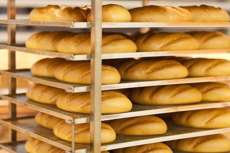 fresh wheat bread on shelf in supermarket Stock Photo - 18914977