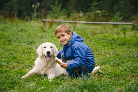 golden: Little boy playing in forest lawn with a golden retriever. Stock Photo