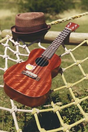 Brown hat and ukulele placed on a hammock