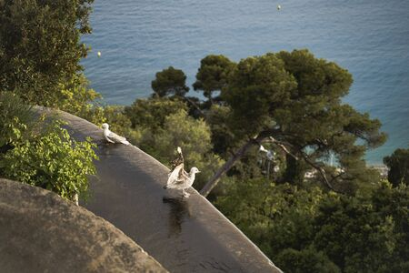 View of luxury resort and bay of Cote dAzur. Villefranche by Nice, french riviera. Banco de Imagens