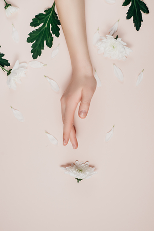 Creative and fashion art skin care of hands and white flowers in hand of women. Female hand with white flowers on pink background. Cosmetics for hands anti wrinkle. Flat lay, top view, copy space Banco de Imagens - 119798524