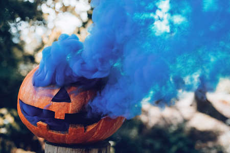 Spooky carved Halloween pumpkin with blue smoke coming out of holes in autumnal woods at sunny day. Concept of Halloween season. Copy space