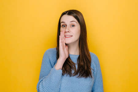 Serious young woman look at camera tell secret information, millennial cute brunette girl make loudspeaker share private sale promotion, dressed in blue sweater, isolated on yellow studio background