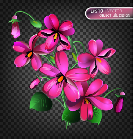 Violet Floral background is isolated on a transparent background. Vector illustration