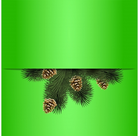 Christmas fir background