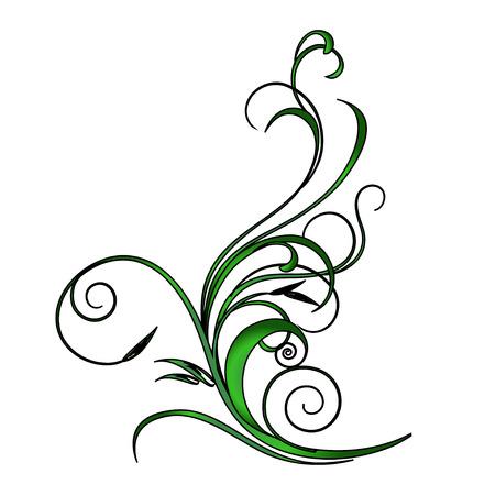 cirrus: Illustration of plants, branches
