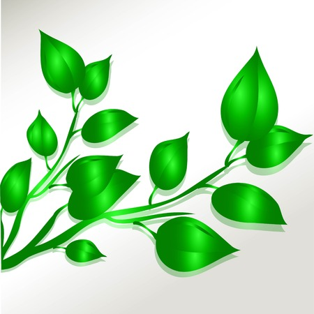 illustration of green leaves