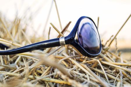 Sunglasses in a haystack Stock Photo