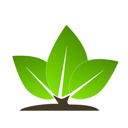 Ecology icon leaves Illustration