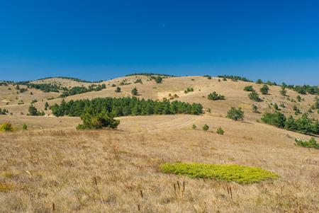 inclination: Beautiful autumnal landscape on Ai-Petri mountain tableland in Crimean peninsula