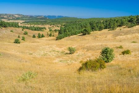 inclination: Autumnal landscape on Ai-Petri mountain tableland in Crimean peninsula