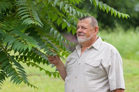 hombre con barba: Outdoor portrait of a bearded senior man in light shirt enjoying the nature